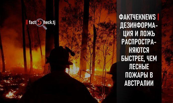 Australia's bushfires